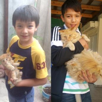Macario y Miau
